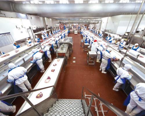 Revestimentos para pisos de fábricas de processamento de alimentos e bebidas – Quais as orientações da Anvisa?